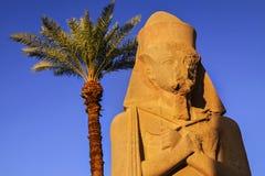 古老Egyptain雕象和棕榈树卡纳克神庙寺庙卢克索埃及 库存图片