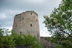 古老Izborsk堡垒塔  免版税库存照片