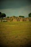 古老Ostia废墟和墙壁玩具照相机 免版税图库摄影
