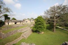古老palenque 免版税库存图片