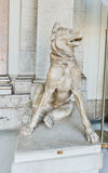 古色古香的大理石狗雕塑在梵蒂冈,意大利 免版税库存照片
