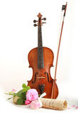 古色古香的小提琴,笔记和上升了 库存照片
