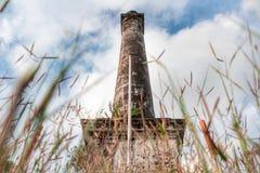 古色古香的柱子在森林里 免版税图库摄影