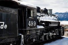 古色古香的火车里约格朗德 免版税库存照片
