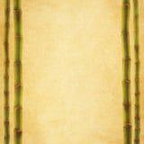 古色古香的纸纹理 免版税库存照片