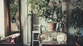 古色古香的经典内部,椅子,桌-软的白天 库存照片