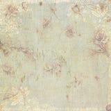 古色古香的背景花卉主题葡萄酒 图库摄影