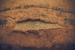 古色古香的背景黑暗皮革老 了不起的纹理细节 图库摄影