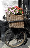 古色古香的自行车,有花的 免版税图库摄影