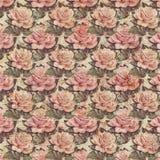古色古香的葡萄酒样式植物的桃红色花卉玫瑰背景 库存例证