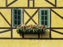 古色古香的视窗 库存照片