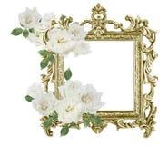 古色古香的金黄在白色backgr隔绝的框架白玫瑰 库存照片