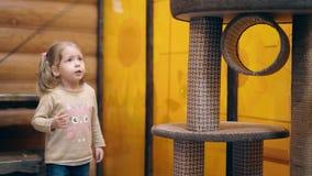 古芝:年轻母亲和一个小甜女儿使用与小猫,微笑 股票录像