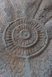 古董(Dhamma轮子) 免版税库存照片