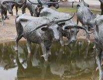 古铜色操舵雕塑先驱广场,达拉斯 免版税库存照片