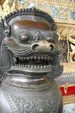 古铜色狮子 免版税图库摄影
