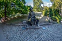 古铜色雕象在多瑙河公园,诺维萨德,塞尔维亚 免版税库存图片