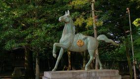 古铜色马 免版税库存图片