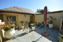 古雅后院与许多盆栽植物生活 免版税库存照片