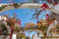 古雅地被种植的房子在Puerto de Mogan 免版税库存照片