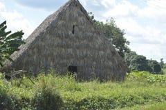 古巴瓦尔在Piñar del里约的de ViA±aless 库存照片
