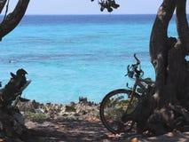 古巴的自行车 免版税图库摄影