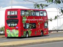 另一个公共汽车去的绿色伦敦红色 库存照片