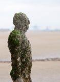 另一个安排雕塑 免版税库存图片