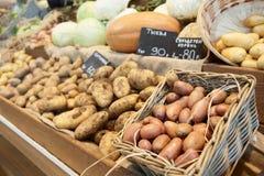 另一棵potatos蔬菜 免版税库存图片