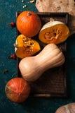 另外大小、形式和颜色南瓜品种  库存照片