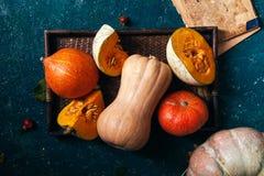 另外大小、形式和颜色南瓜品种  库存图片