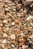 另外大小沙子、在水下的石头和叶子在阳光下,抽象背景 免版税库存照片