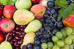 另外新鲜水果 免版税库存照片