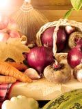 另外秋天菜和果子新近地被采摘的收获  库存图片