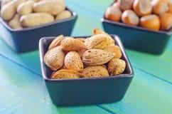 另外种类坚果 免版税库存图片