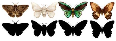 另外颜色和剪影蝴蝶 向量例证