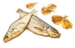 另外鱼开胃菜特写镜头 免版税库存图片