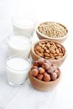 另外素食主义者牛奶 免版税库存图片