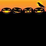 4只南瓜和乌鸦 库存照片