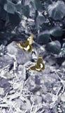 2只果树园蝴蝶电话的幻想墙纸 库存图片