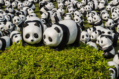 1600只熊猫世界游览 库存图片