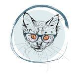 12只猫kuzia o纵向高级y 象查找的画笔活性炭被画的现有量例证以图例解释者做柔和的淡色彩对传统 能分别地使用与您的设计 库存图片