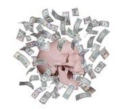 叫喊的头骨在美元中雨  免版税库存照片