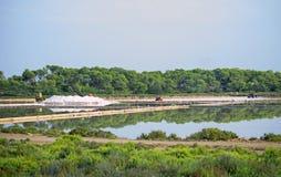 叫的人为水池包括堆海岛意大利其磨房许多生产长方形卓越的路盐海运西西里岛赤土陶器trapani 免版税库存照片