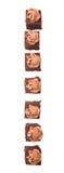 叮咬大小的巧克力蛋糕v 免版税库存图片