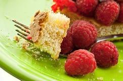 叮咬蛋糕莓 库存照片