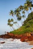 可乐海滩在果阿 免版税库存照片