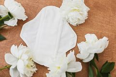 可再用的eco自然垫 从棉花和聚酯的白色女性耐洗,健康和eco友好的垫 E 库存照片