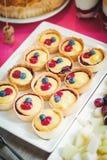 可口五颜六色的新鲜的蛋糕 免版税图库摄影