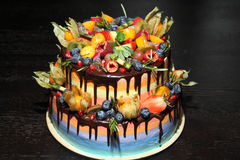 可口儿童` s果子蛋糕用新鲜的草莓,莓,蓝莓,无核小葡萄干,猕猴桃,在木backgroun的石榴 图库摄影